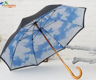 Double-Canopy-umbrella
